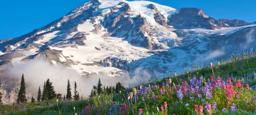Mount Rainier National Park Makes For A Great Scenic Drive