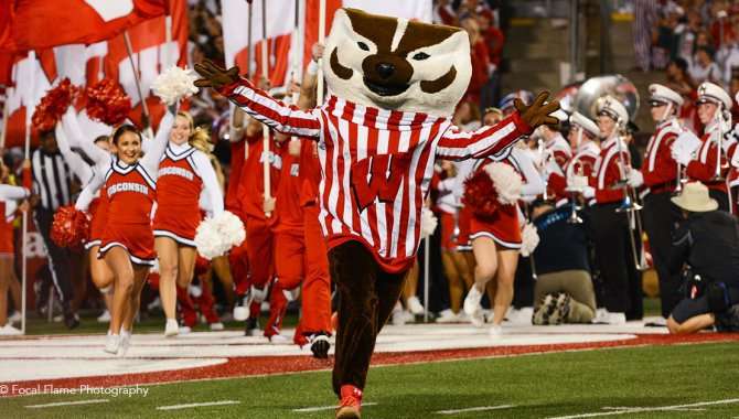 Bucky Badger on field