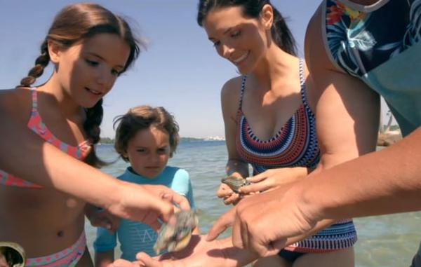 Video Thumbnail - vimeo - Ecotourism_3_Shells