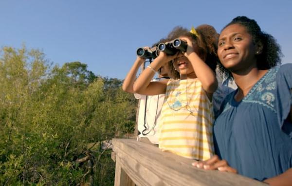 Video Thumbnail - vimeo - Ecotourism_2_Birdwalk