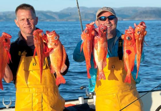 Sea fishing in Trøndelag with Hasvåg Fritid
