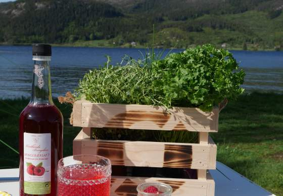 Raspberries and local products from Vintland