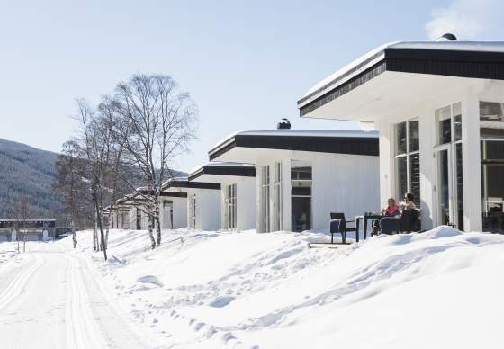 Cottages and apartments in Ål in Hallingdal