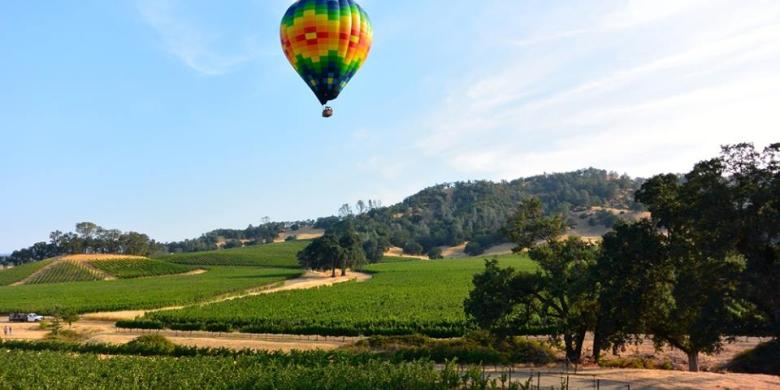 Things To Do In Napa Valley Arts Music Outdoors Shopping - 11 amazing attractions and activities in napa valley