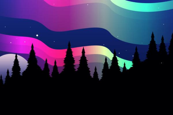 pink green blue northern lights graphic with pine forest silhouette