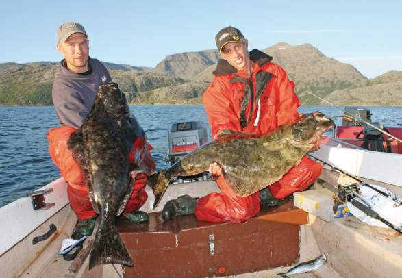 Halibut Fishing Norway | Sea Fishing In Northern Norway Official Travel Guide To Norway