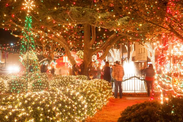 Forest City Christmas Lights Circle