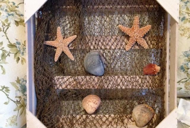 Strike Seashell Gold-697-10