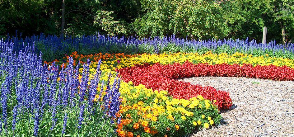 Gardens Images rockford gardens | anderson japanese gardens