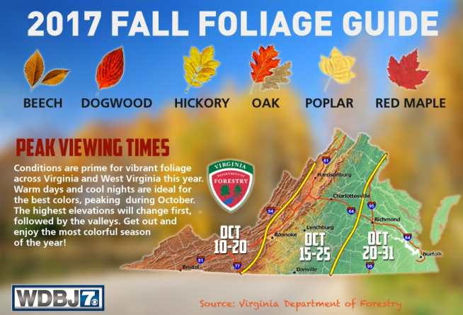 Fall Foliage Outlook