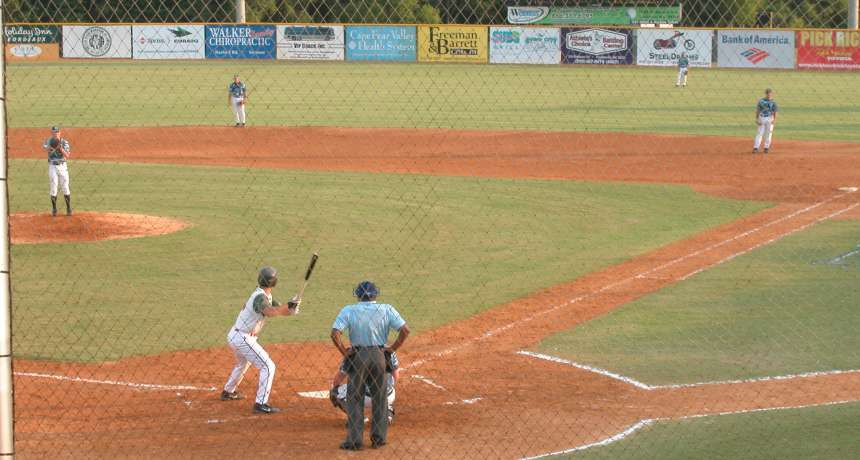 Swampdogs Baseball