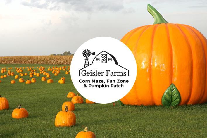 Geisler Farms 2017