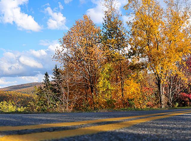 Finger Lakes fall driving tours