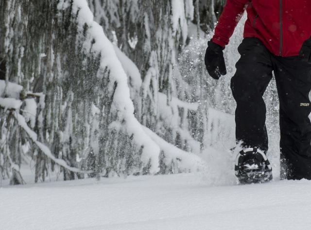 Seasons Winter - Snowshoeing