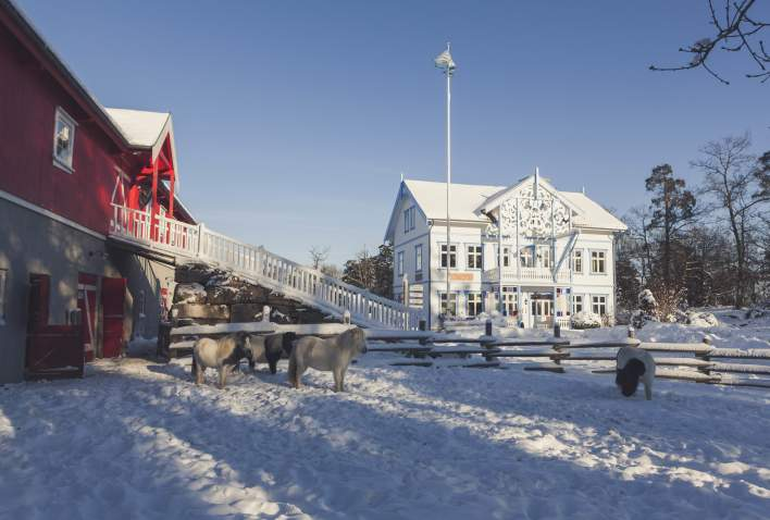 Kutoppen, Dyreparken in winter