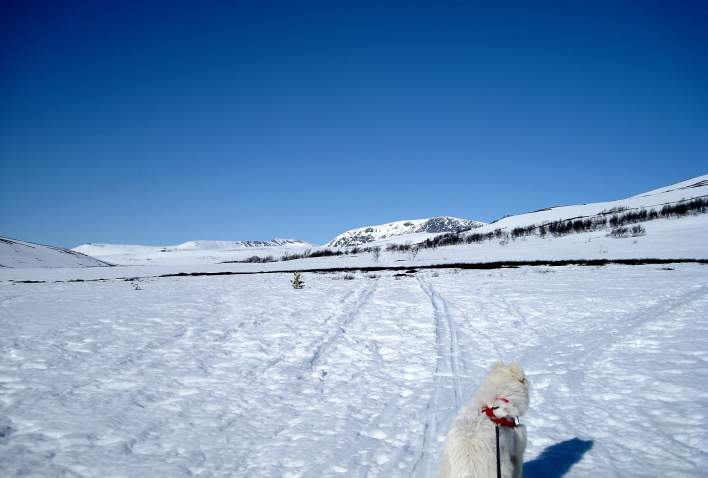 Tur til Blåhøa