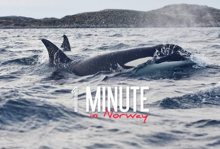 1 MINUTE IN NORWAY