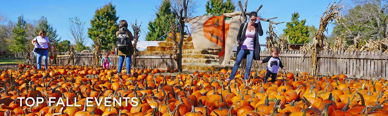 Pumpkin-Hollow-Overland-Park-Fall-Events