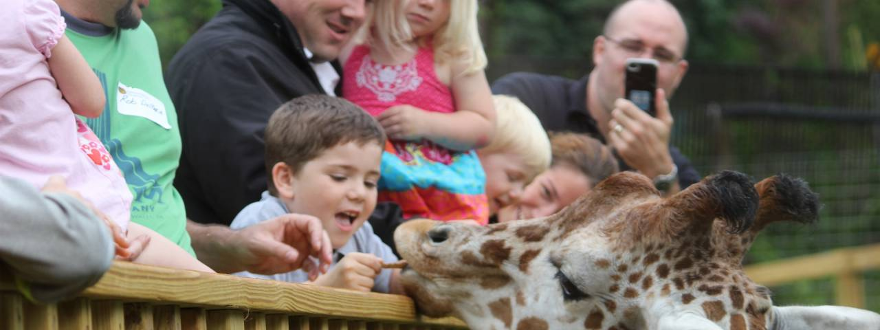 Elmwood Park Zoo Header