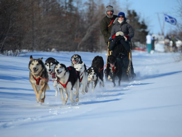 Frontiers North Adventure dog sled