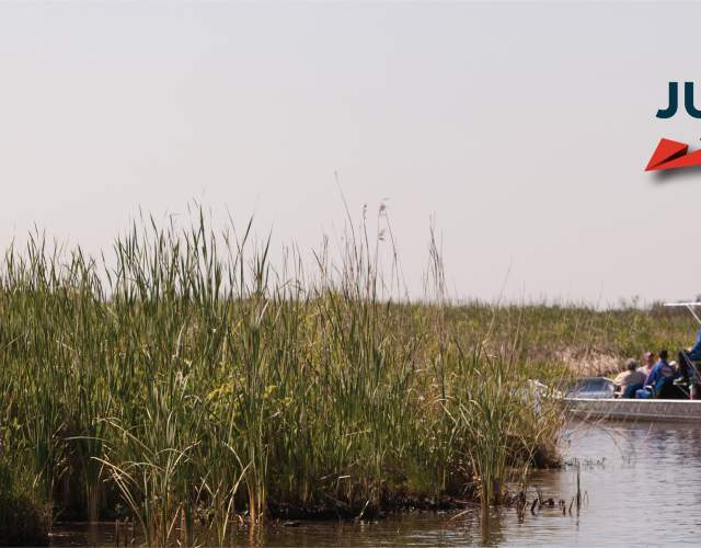 Just Imagine Airboat Ride