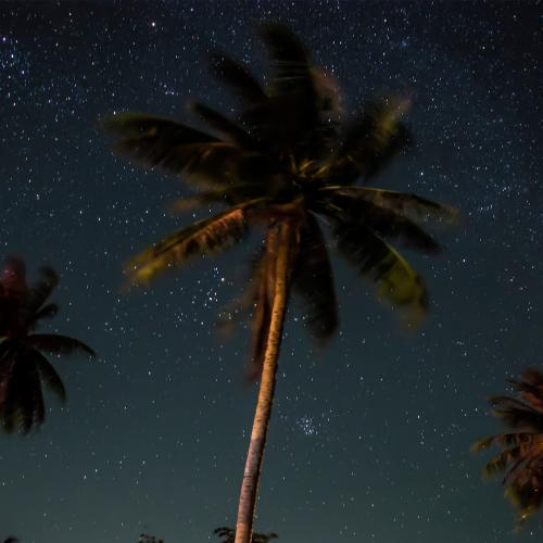 discover stars in greater palm springs