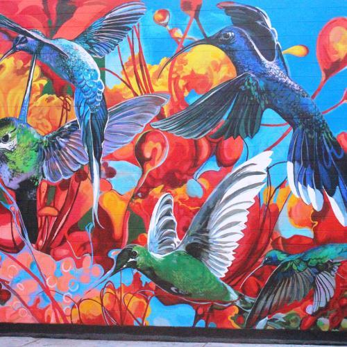 indio mural