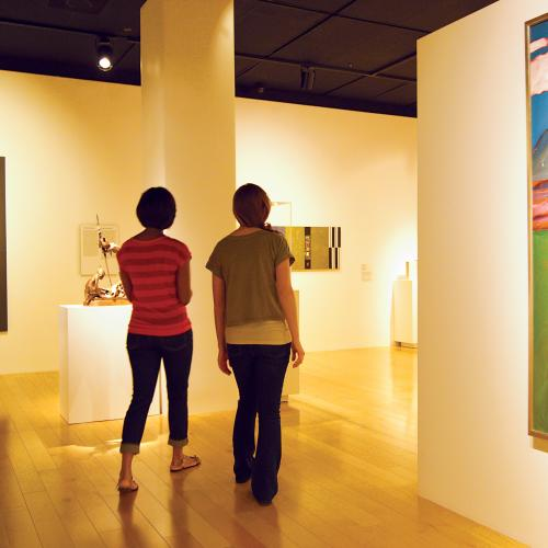 palm springs art museum native american gallery women