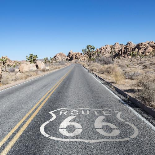 route66 joshuatree web