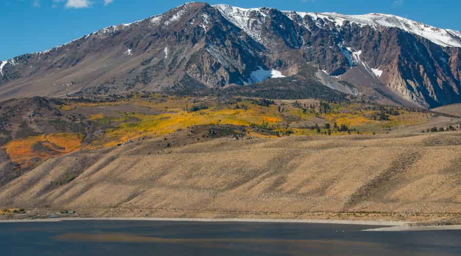 Grant Lake Fall Colors