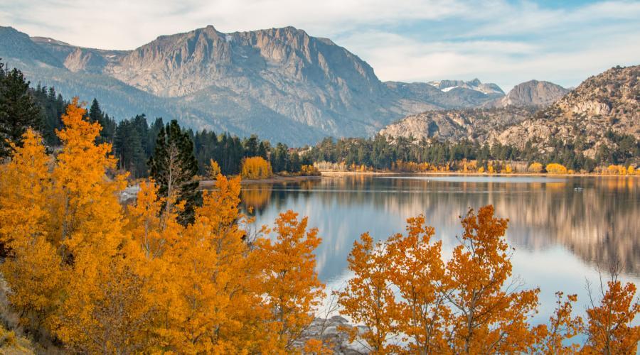 June Lake full fall color