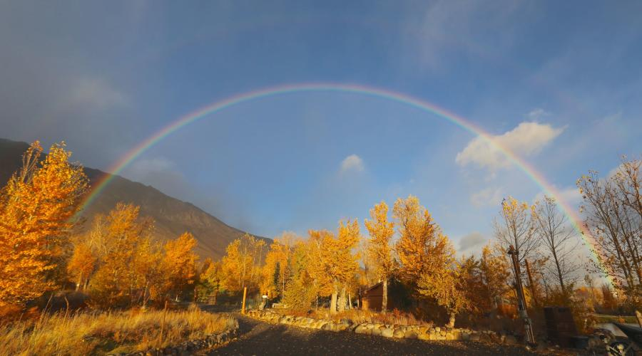 Rainbow in Fall