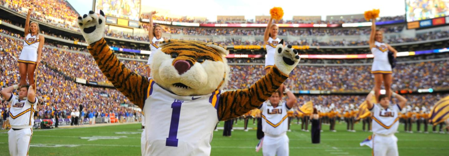 LSU Mascot and cheerleaders working the crowd at a game