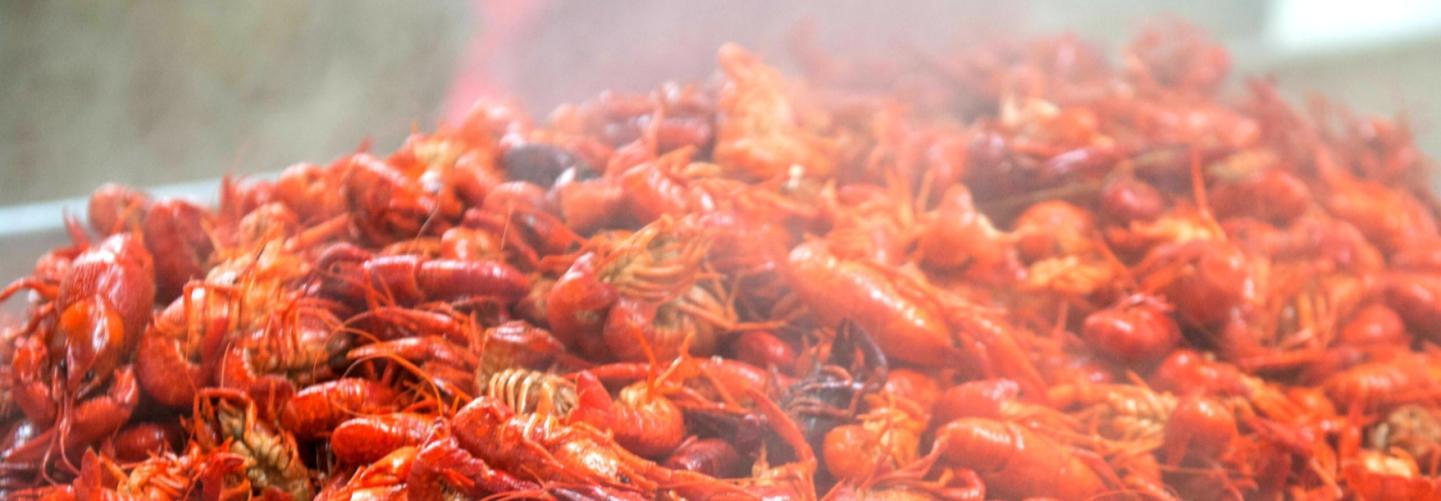 Big tasty pile of boiled crawfish