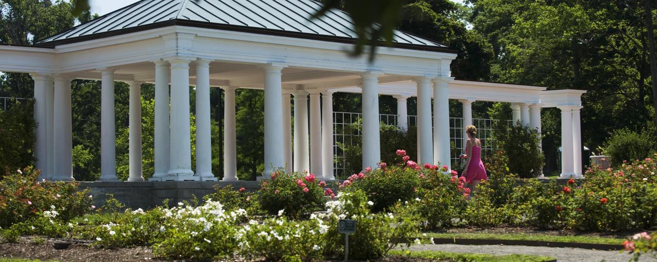 Lovely RoseGarden DelawarePark RoseGarden DelawarePark. Rose Garden ...