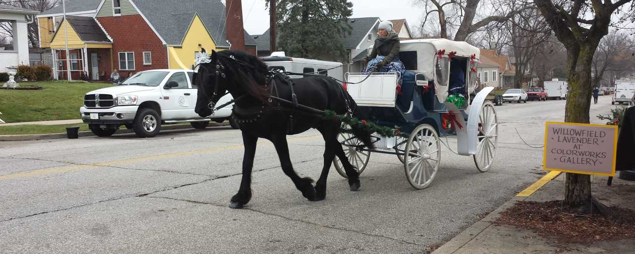 Victorian Christmas Carriage Ride