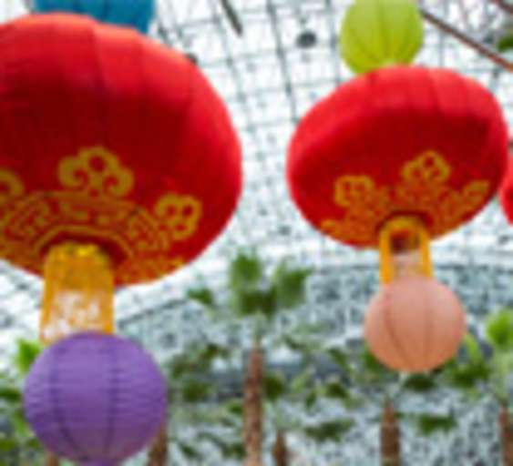 Neighborhoods of the World: Chinese Lantern Festival
