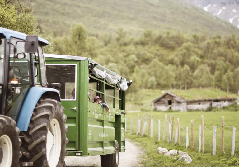 Traktorsafari