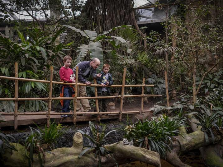 Omaha S Henry Doorly Zoo And Aquarium