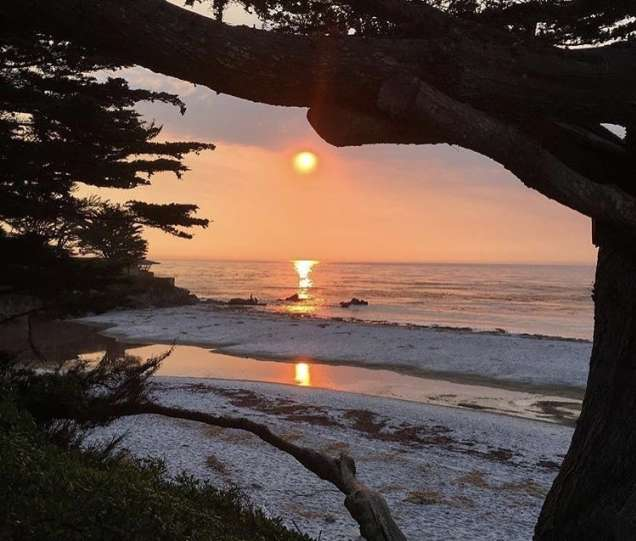 10 Photo Ops Worthy Of Instagram In Monterey County
