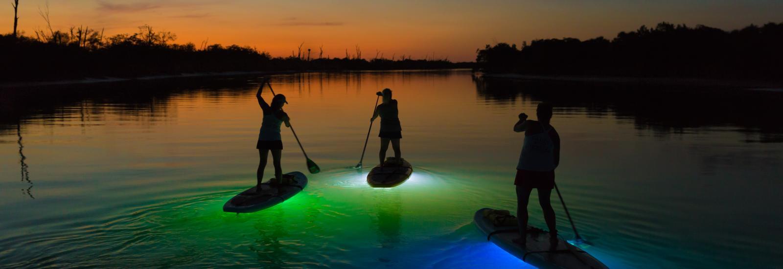 Things to Do in Englewood Beach & Punta Gorda, Florida