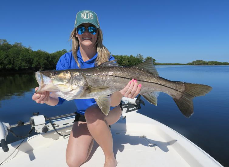 Let 39 s go fishing top species to catch in charlotte harbor for Port charlotte fishing charters