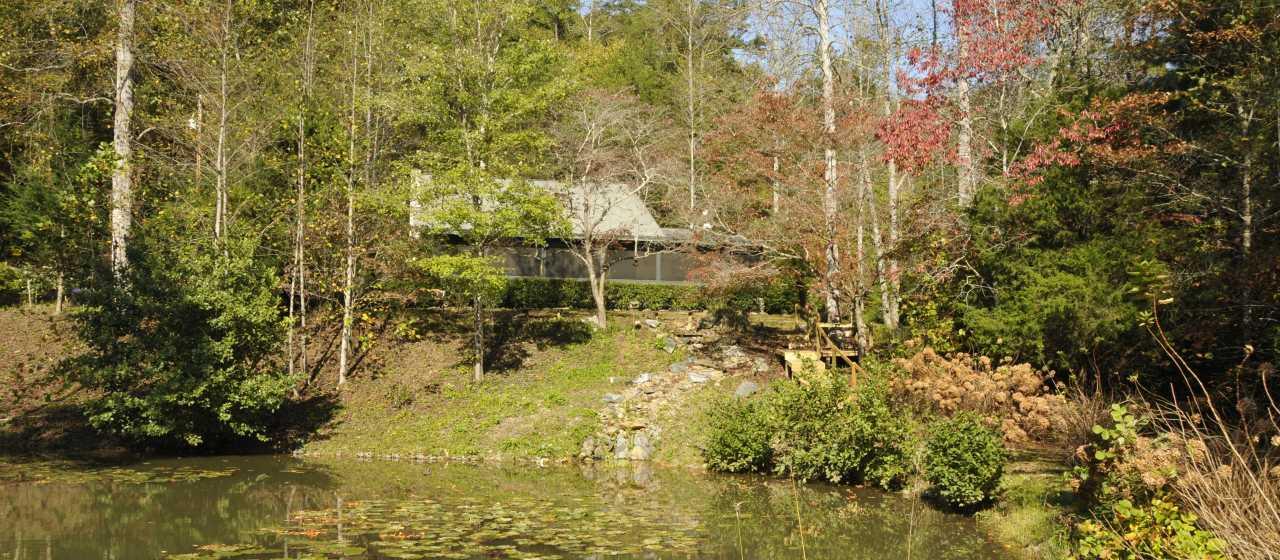 Mountain Cabin Rental}