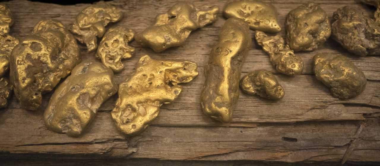 America's FIrst Gold Rush}