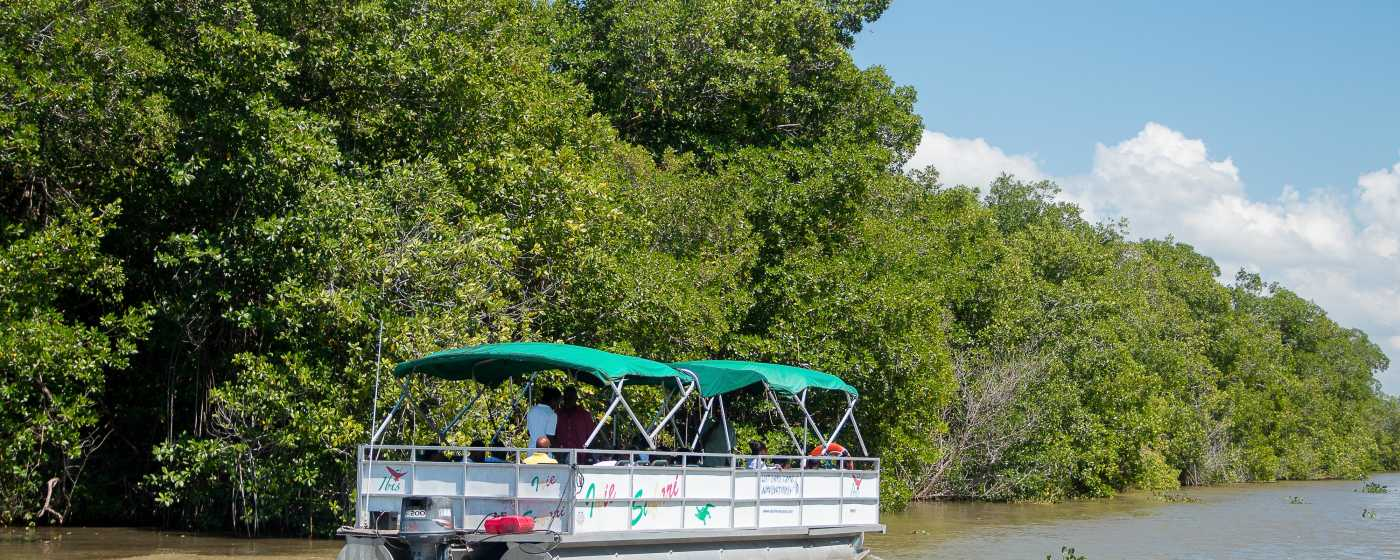 Black River Safari boat