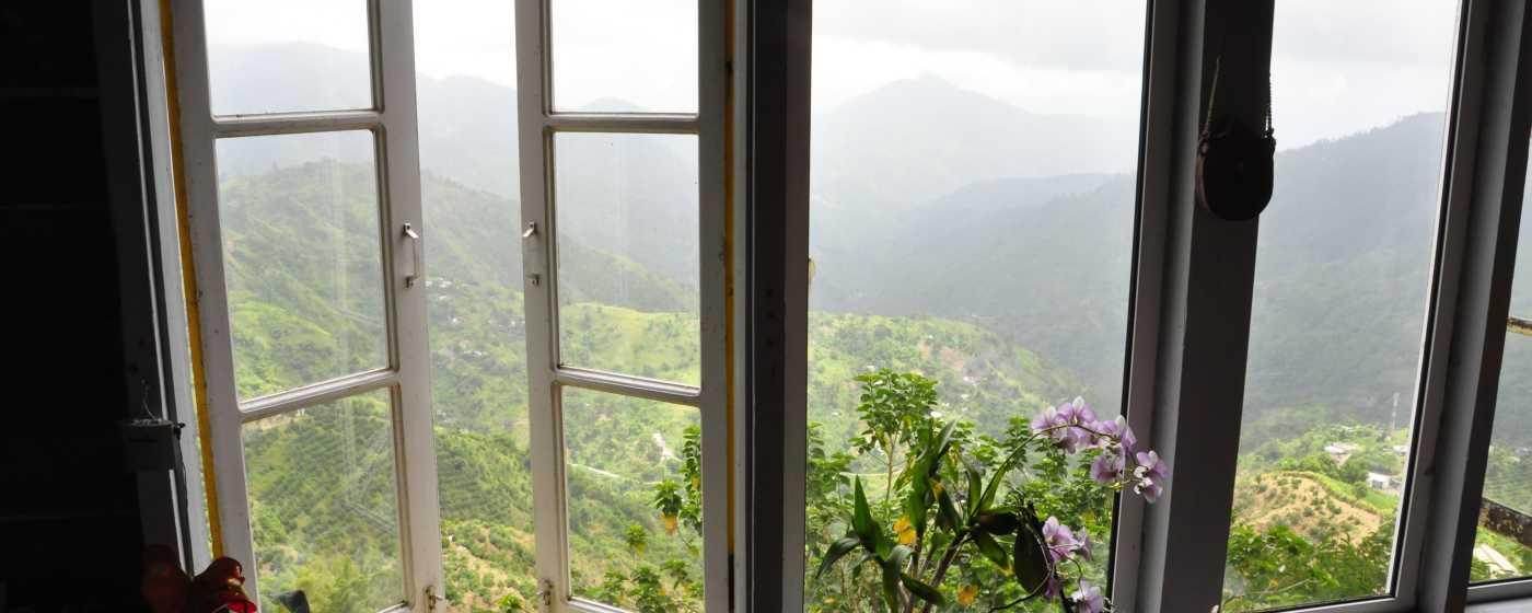 Blue Mountain Morning