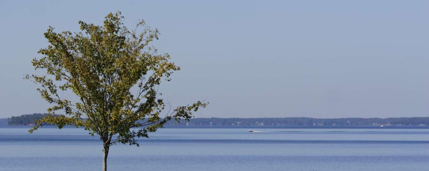 Hotels In Columbia Sc Irmo Lake Murray Lodging