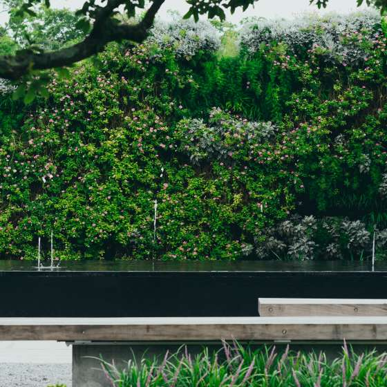 Botanical Garden - New Orleans City Park