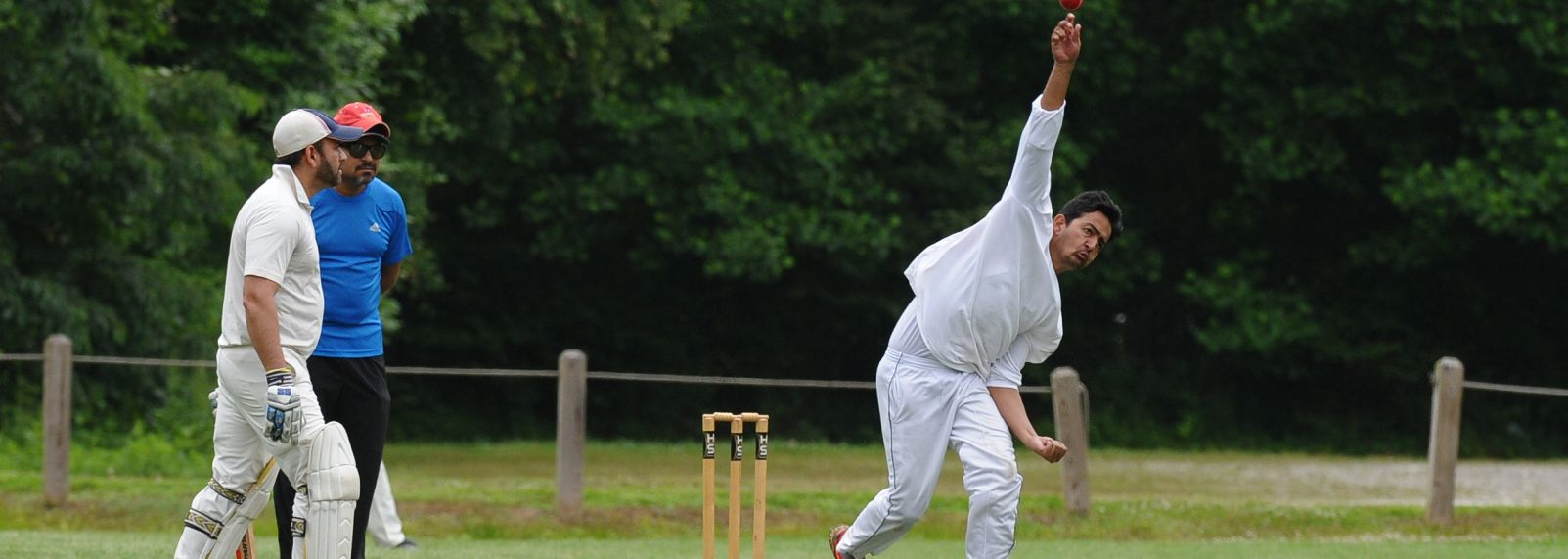 Cricket 02-213.jpg