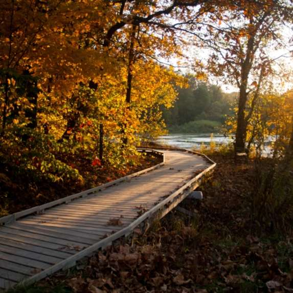 Copy of Lake Griffy Boardwalk